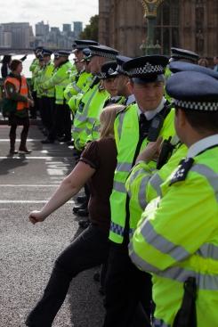 block the bridge demonstration-6