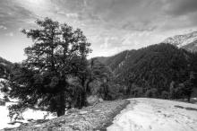 HIMALAYAN MOUNTAIN SCENE 6