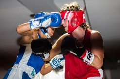 WHITE COLLAR BOXING -14