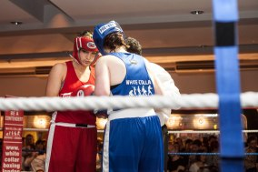 WHITE COLLAR BOXING -27